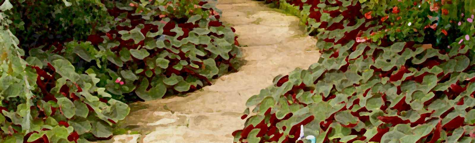 Some Practical Tips on Finding a Landscaper